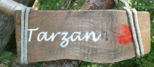 Parcours Tarzan